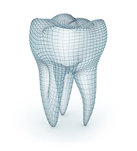 Diagram of a tooth at periodontist office in South Ogden, UT.